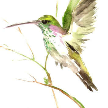 Flying Hummingbird, Original watercolor painting, 12 X 9 in, green white wall art, bird painting