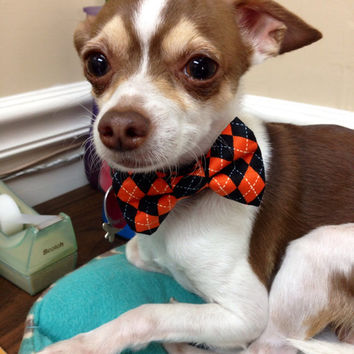 Halloween Argyle Dog Collars with Bow tie set (Mini,X-Small,Small,Medium ,Large or X-Large Size)- Adjustable