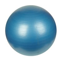 Sunny Health & Fitness 29.5-in. Anti-Burst Gym Ball (Blue)