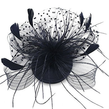 HSRT Bridals Party Black Sinamay Feather Gauze Net and Veil Fascinator