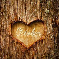IT'S OCTOBERRRR | via Tumblr