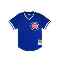 Mitchell & Ness Men's Ryne Sandberg Authentic Mesh BP Jersey - Royal