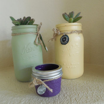 mason jar succulents, multi colored, sets or individually, custom order charms or embellishments. great gift ideas.