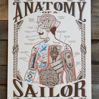 "Anatomy of a Sailor POSTER 12"" x 18"""
