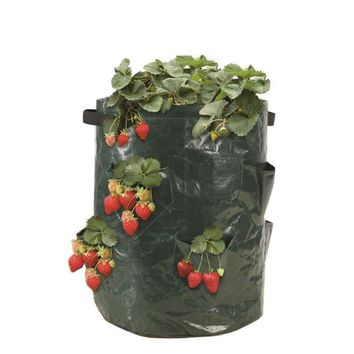 Strawberry Planter Bag PE Planting Bag LARGE CAPACITY ONLY Garden Gardening Planting bags 8 Pockets free shipping