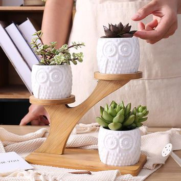 Ceramic Owl Plant Pots with 3-Tier Bamboo Shelf