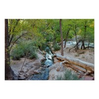 Zion National Park Waterscape Poster