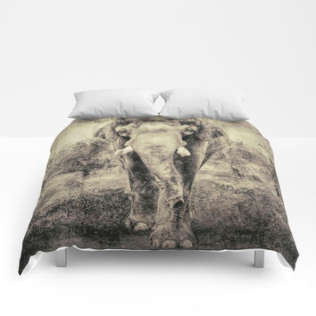 Lone Elephant Comforters by Theresa Campbell D'August Art