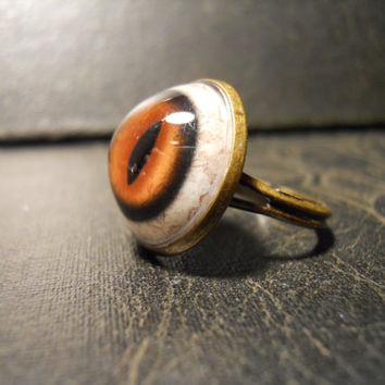Red Fox Taxidermy Glass Eye Ring