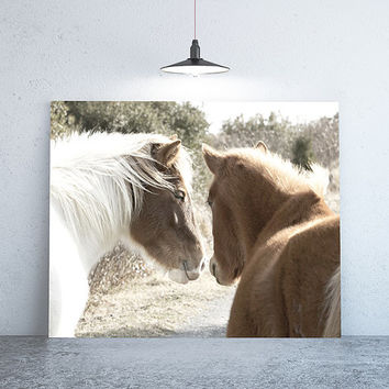 """24 """" x 18"""" - Vintage Photography, Large Print of Two Wild Horses"""
