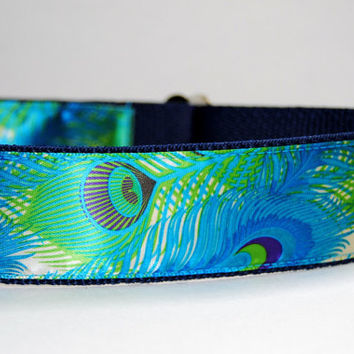 Blue Green Peacock Feather Large Dog Collar Leash Set