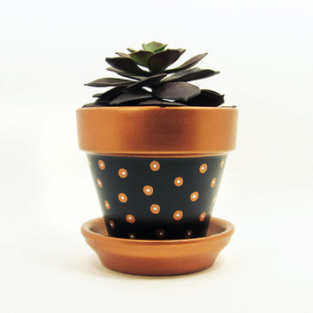 Terracotta Pot, Succulent Planter, Bronze Planter, Succulent Pot, Flower Pot, Modern Planter, Indoor Planter, Black Planter, Polka Dot Pot