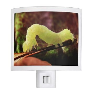 Wildlife Garden Green Inchworm Night Light