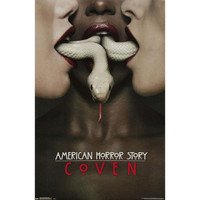 American Horror Story - Coven 22x34 Standard Wall Art Poster