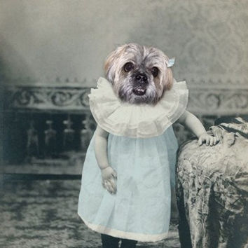 Gretel 5x7 Print  Anthropomorphic  Altered Photo  by AnimalFancy