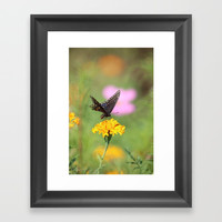 Swallow Tail Dream Framed Art Print by Theresa Campbell D'August Art