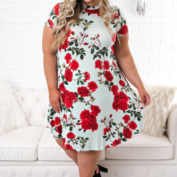 Curvy Way To Your Heart Dress (Mint)