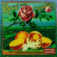 Rose Brand - Vintage Citrus Crate Label - Handmade Recycled Tile Coaster