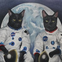 Astrocats from the CATSA