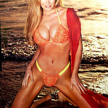 Cindy Margolis Bikini Pin-Up Poster 22x34
