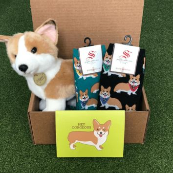 Corgi Care Package