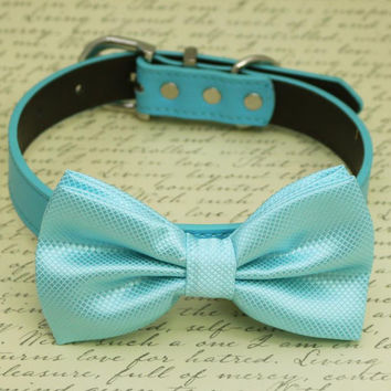 Light Blue dog Bow tie Collar, Pet wedding accessory, Some thing Blue, Beach Wedding