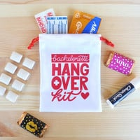 Bachelorette Party Favor, Hangover Kit, Bachelorette Hangover Kit, Bachelorette Favor, Team Bride, 4 x 5 favor bag, hangover kit bags