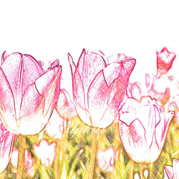 """Tulips are forever, wall decor illustration, Pink tulip flower drawing, Printable art, Dutch tulips, 10x8"""", 300 dpi, JPG, Instant Download"""