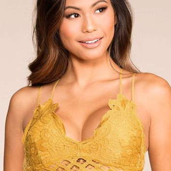 Elise Honey Lace Bralette