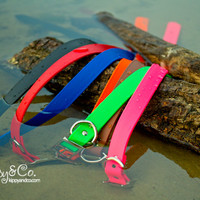Waterproof Dog Collar 1 inch Wide