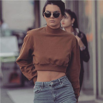 Brown High Neck Long Sleeve Cropped Sweater