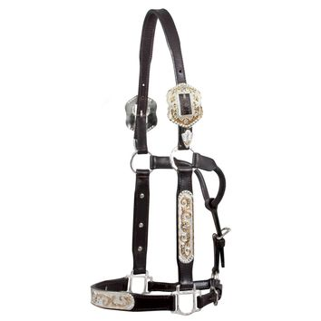 Raleigh QH Show Halter Scallop Buckle in QH Show Halters