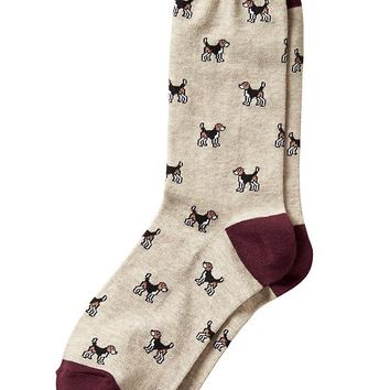 Banana Republic Factory Beagle Sock Size One Size - Light oatmeal heather