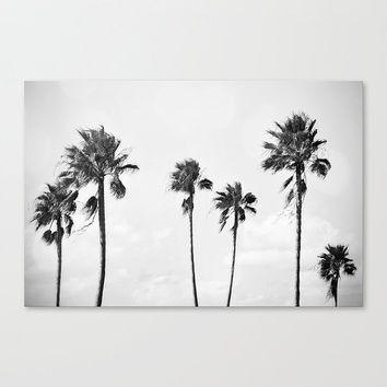 Black Palms - Canvas Wrap Gallery Wall Hanging, Beach Surf Decor, Light Gray Coastal Palm Trees Landscape Art. 8x10 11x14 16x20 20x24 24x36