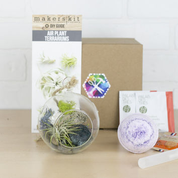 Crystal Hanging Air Plant Gift Set