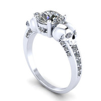 Ladies Diamond Ring and Silver Skulls