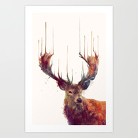 Red Deer // Stag Art Print by Amy Hamilton