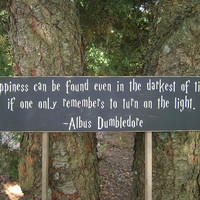 Harry Potter Quote Distressed Wood Sign