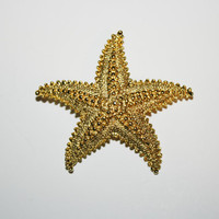 Gerry's Signed Starfish brooch / Pin 2 1/8 inches | Ships FREE in US