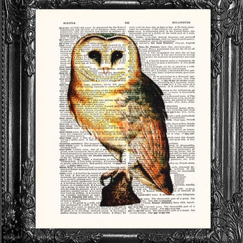 Barn Owl-Dictionary Print Book Print Page Art-Upcycled Antique Book Page-Print On Dictionary Book Page-Upcycled Book Page