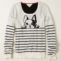Anthropologie - Top Dog Pullover