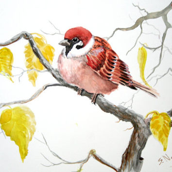 Sparrow on the tree, original watercolor painting 9 X12