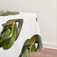Black-margined Ratsnake or Green rat snake Tablecloth