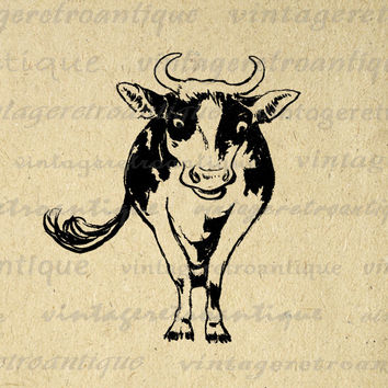 Printable Digital Cow Image Farm Animal Download Cow Illustration Graphic Vintage Clip Art for Transfers Printing etc HQ 300dpi No.1987