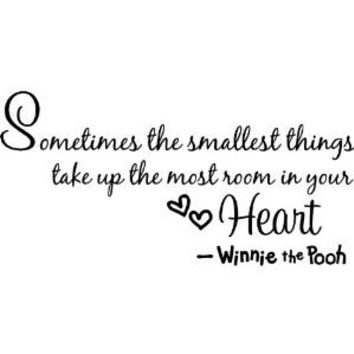 Winnie the Pooh!! Wall Quote, Sometimes the smallest things take up the most room in your heart - Winnie The Pooh