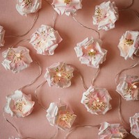 Tea Rose Lights