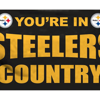 Pittsburgh Steelers Flag 3x5 Country