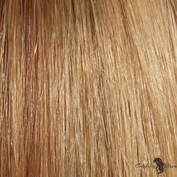 """18"""" Clip In Remy Hair Extensions: Light Brown/ Golden Blonde No. P8-24"""