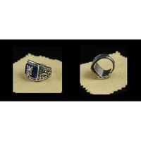 The Vampire Diaries Jeremy Gilbert Ring/Alaric's Ring
