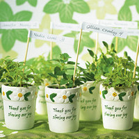 Miniature Flower Pots Wedding Favors